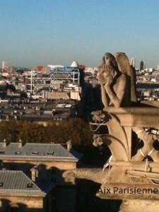 Vue notre-Dame Paris